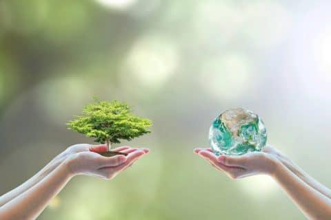 Unternehmerische Nachhaltigkeit – der Umwelt zuliebe