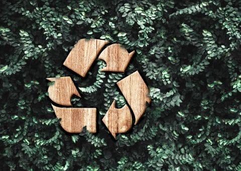 EcoDesign_beitrag